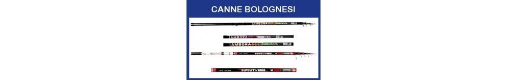 Canne Bolognesi