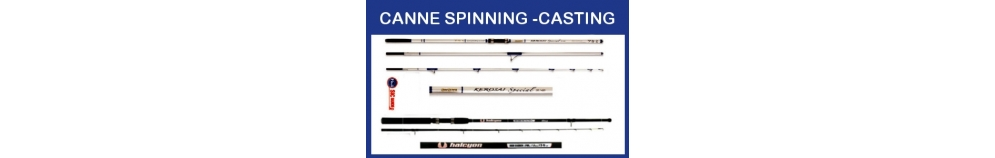 Canne Spinning e Casting