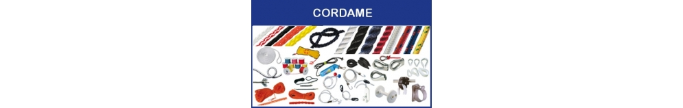 Cordame