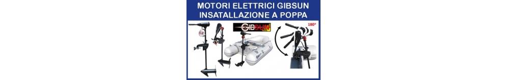 Motori Elettrici Gibsun Installazione a Poppa