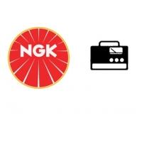 Candele NGK per generatori