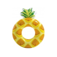 SALVAGENTE ANANAS -  INTEX 56266